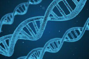 Definicion genes