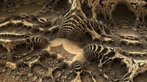 tipos de fosiles
